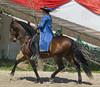 Les Abrons Riding 2014-1070381