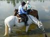 Les Abrons Riding 2014-1070603
