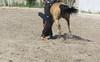 Les Abrons Riding 2014-1070348
