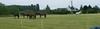 Les Abrons Riding 2014-1070200