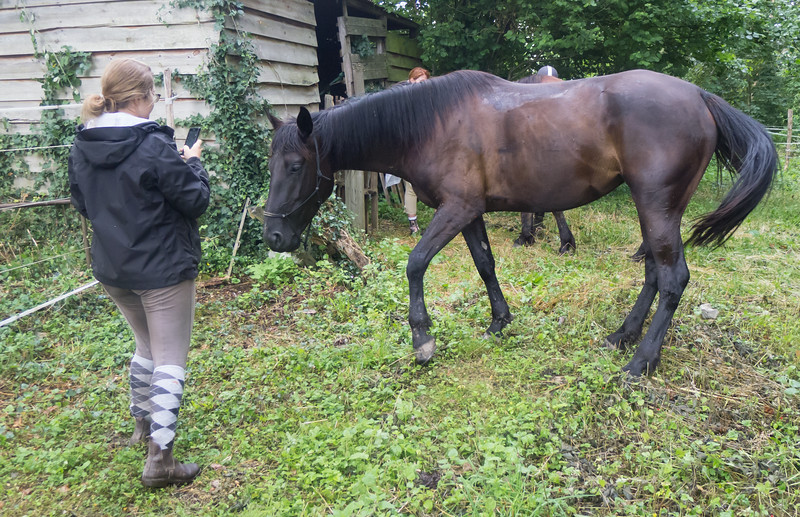 Les Abrons Riding 2014-1070271