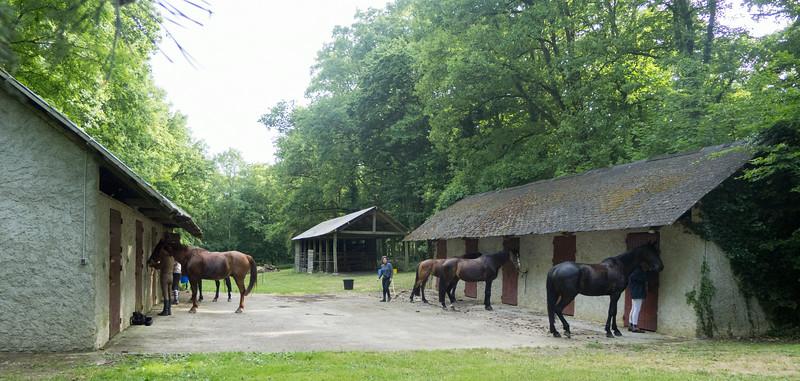 Les Abrons Riding 2014-1070817