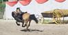 Les Abrons Riding 2014-1070360