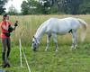 Les Abrons Riding 2014-1070636