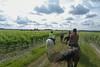 Les Abrons Riding 2014-1070887