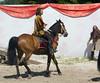 Les Abrons Riding 2014-1070325