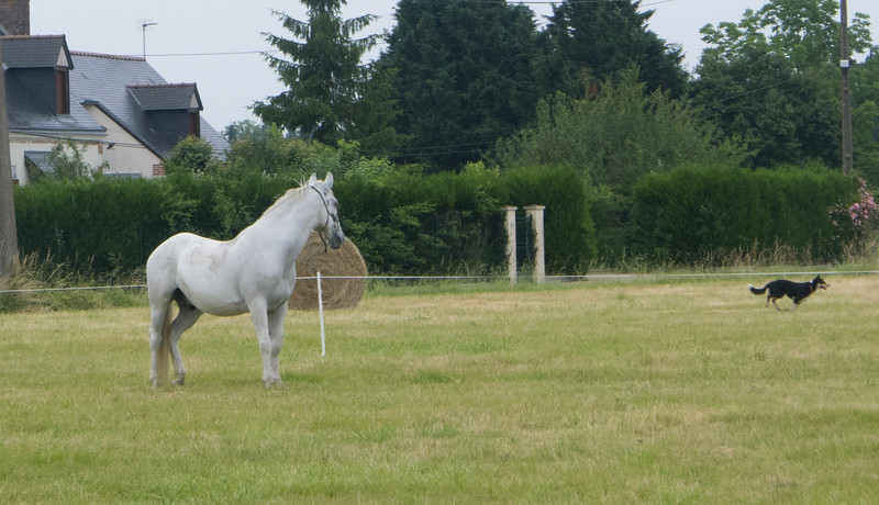 Les Abrons Riding 2014-1070202