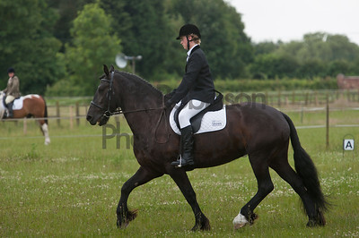 Welton Riding Club Dressage Eagle. June 13th 2014