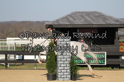 Saturday Schooling Hunter/TBs
