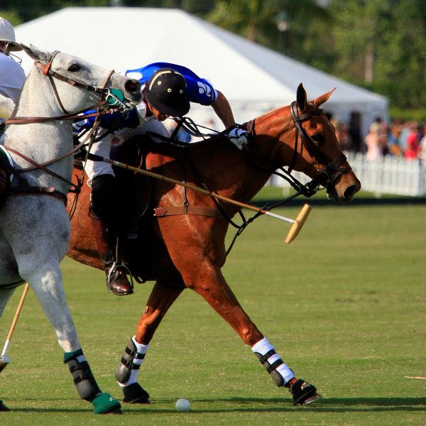 International Polo Club CV Whitney Cup Feb 25 2007- (35)