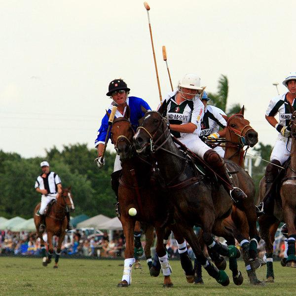International Polo Club CV Whitney Cup Feb 25 2007- (47)