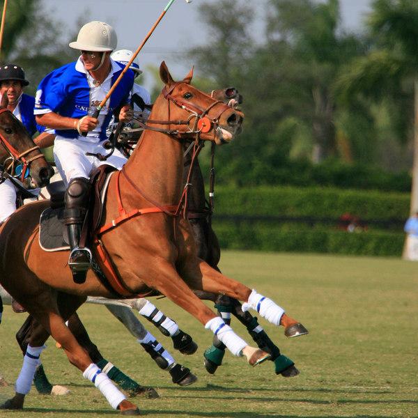 International Polo Club CV Whitney Cup Feb 25 2007- (29)