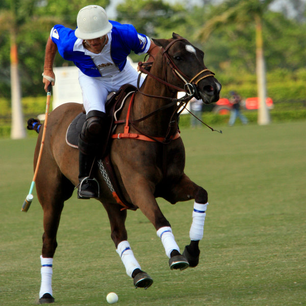 International Polo Club CV Whitney Cup Feb 25 2007- (2)