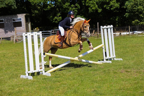 CRC - Show Jumping Show 2017