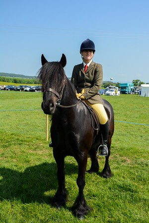 CUMBRIA FELL & DALES PONY SHOW 2016