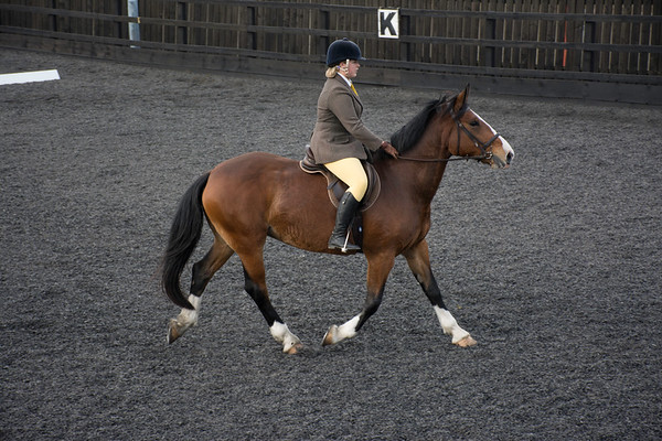 Charity Dressage