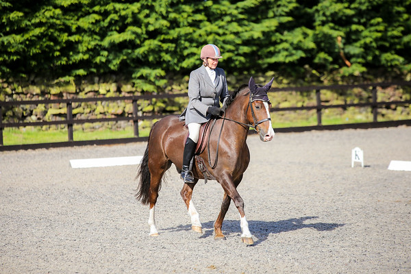 Ellen Valley - April Dressage 2017