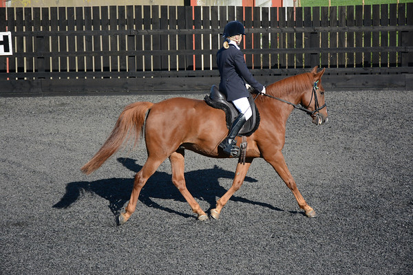 Ellen Valley Dressage to Music October 2016