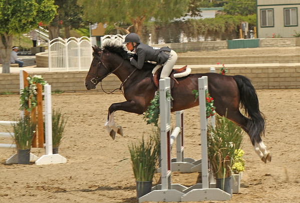L.A. Equestrian Center