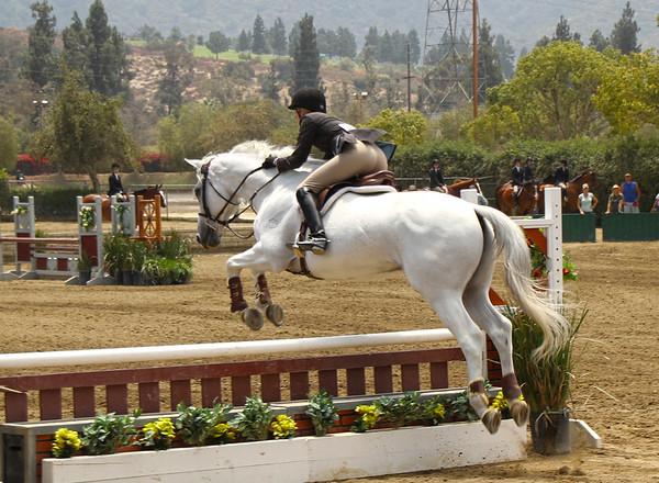 L.A. Equestrian Center