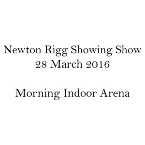 Morning Indoor Arena