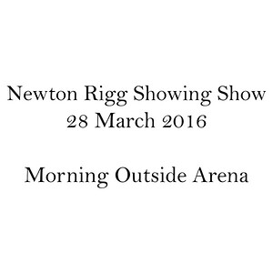 Morning Outside Arena