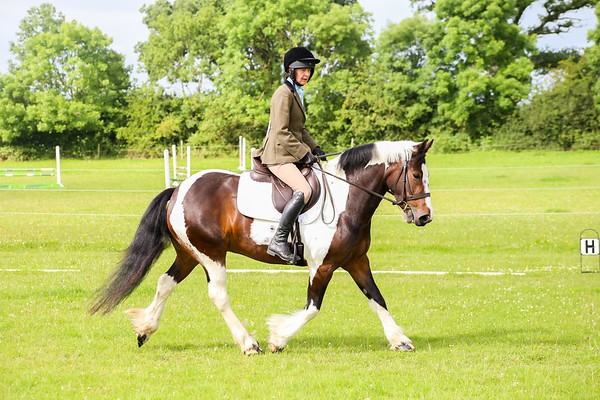 Part 1 - Ellen Valley Open Dressage 2016