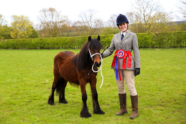 Sparket Equestrian April Showing Show 2017