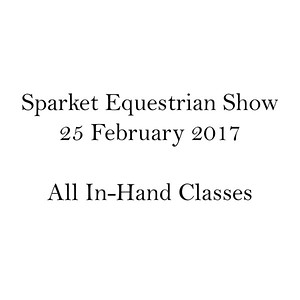 All In-Hand Classes