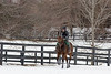 E Pluribus at Moserwood Farm. 02.28.2015