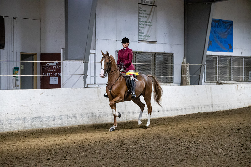 66th Annual PNW Morgan Horse Show