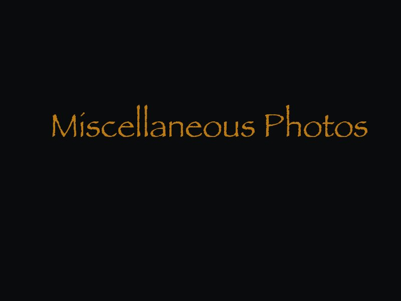 miscphotos