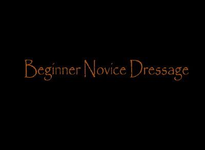 Beginner Novice Dressage