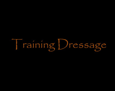 Training Dressage