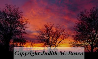 JMB_1445-2