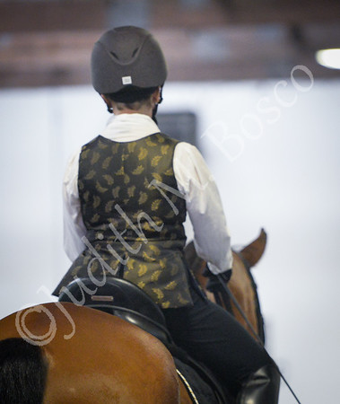 NE Baroque Equestrian Games 8/13/16