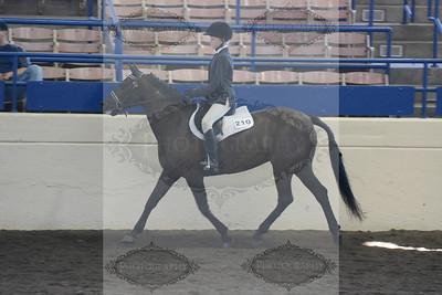 Illinois State Fair Junior Horse Show