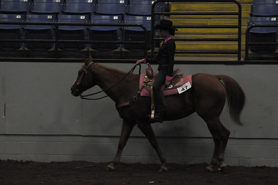 Western Pleasure 12 & Under Quarter Type