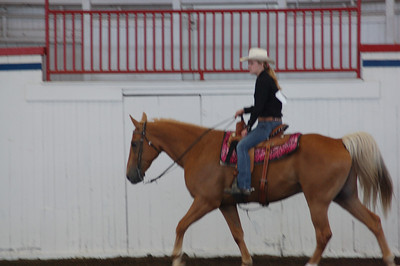 Western Pleasure 13 & 14 Saddle Type