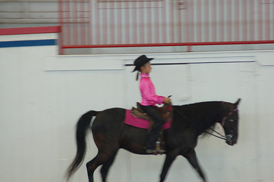 Western Pleasure Novice Saddle Type