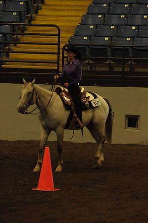 Horsemanship All Ages Ponies