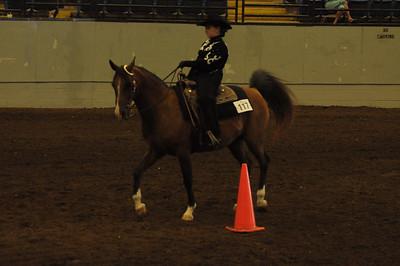 Horsemanship 12 & Under Saddle