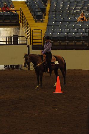 Horsemanship 15 & Over Quarter