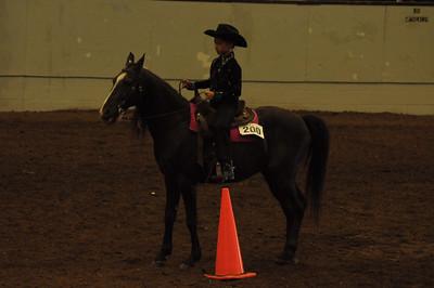 Novice Horsemanship Saddle Type