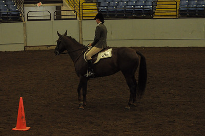 Hunt Seat Equitaion 15 & Over