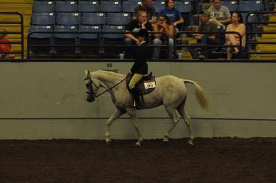 Hunter Under Saddle 14 & Under Saddle