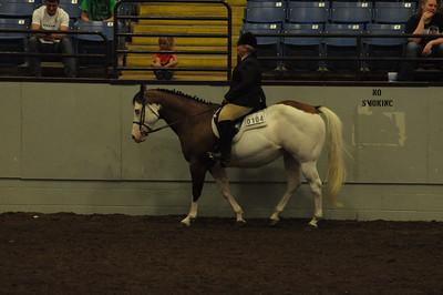 Hunter Under Saddle 14 & Under Quarter