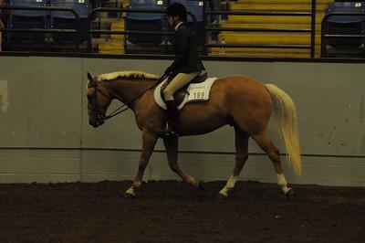 Hunter Under Saddle 15 & Over Quarter