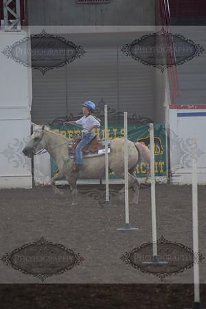 2016 Missouri State Fair 4-H/FFA Horse Show
