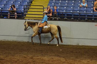 RANCH RIDING PLEASURE 15 & OVER CALL BACK
